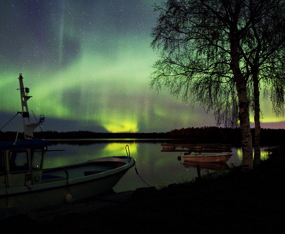 IMG_0863norrskenwebbu800